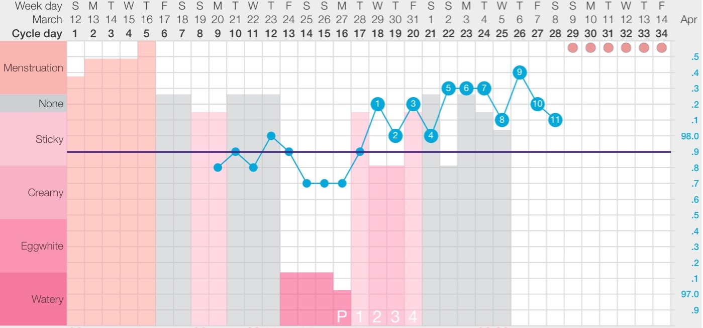 My 12th Chart Using Fertility Awareness Method.