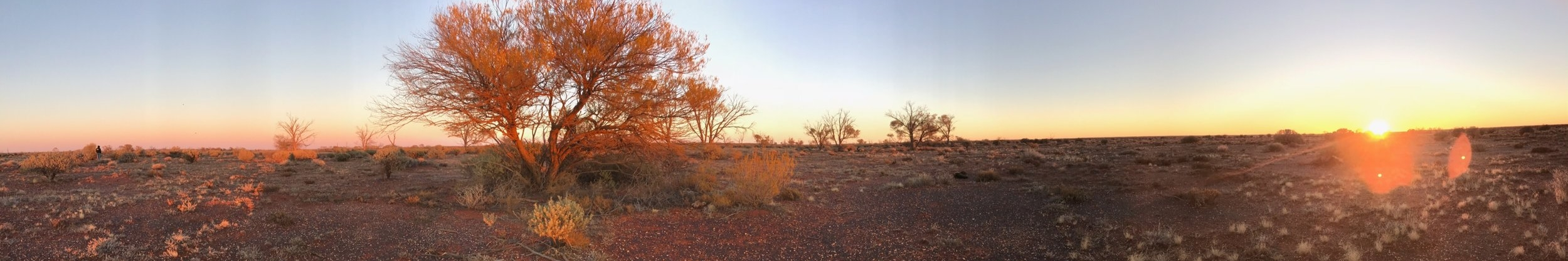Australian Outback - There is always hope !