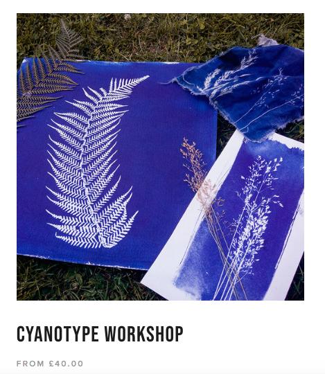 magda kuca cyanotype.png