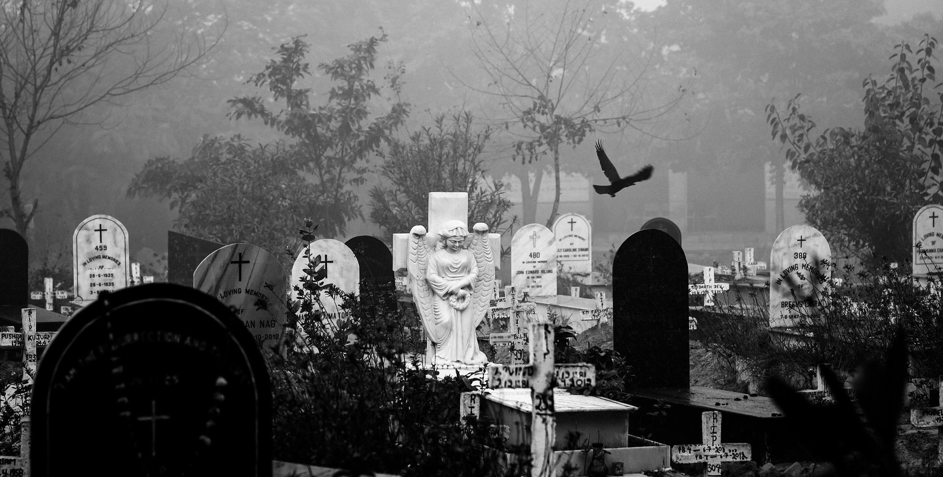 Solemn black and white depiction of a grave.