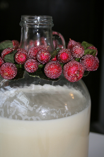 eggnog recipe | talkoftomatoes.com