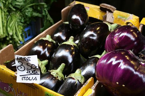 eggplant www.talkoftomatoes.com