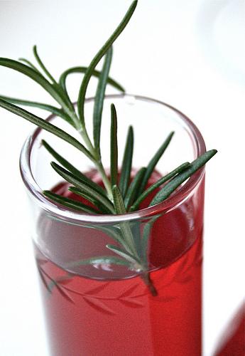 pomegranate martini recipe | talkoftomatoes.com