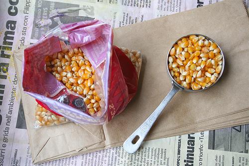 popcorn kernels  talkoftomatoes.com