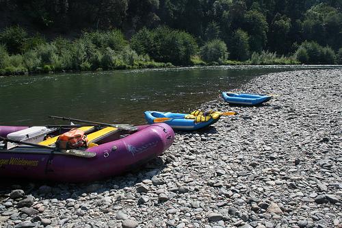 rafts along the rogue