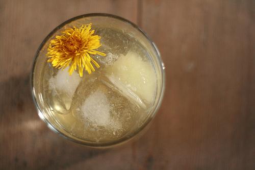 dandelion mojito
