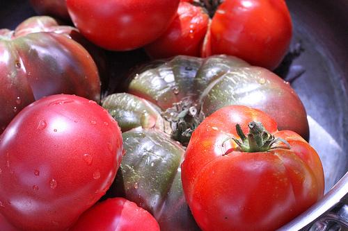 heirloom tomatoes www.talkoftomatoes.com