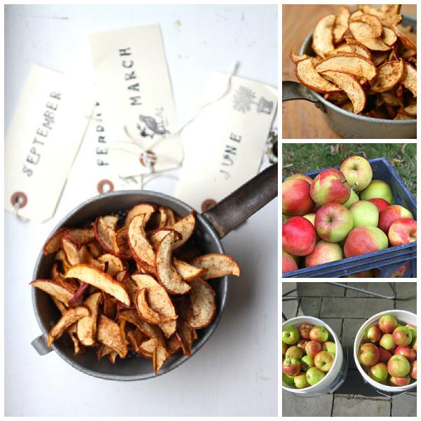 apple chips recipe @talkoftomatoes