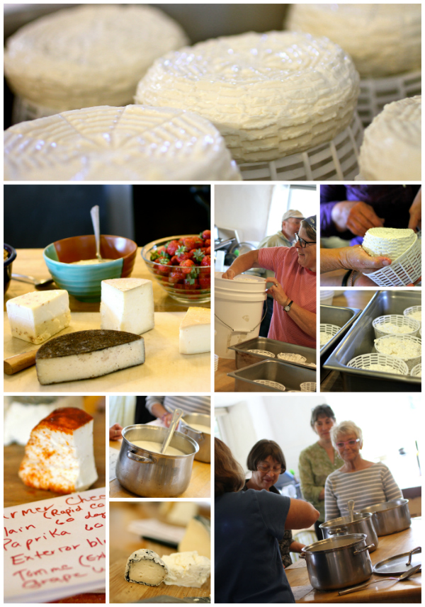 Quillisascut Cheese Workshop @talkoftomatoes