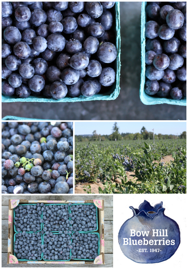 blueberryboxes
