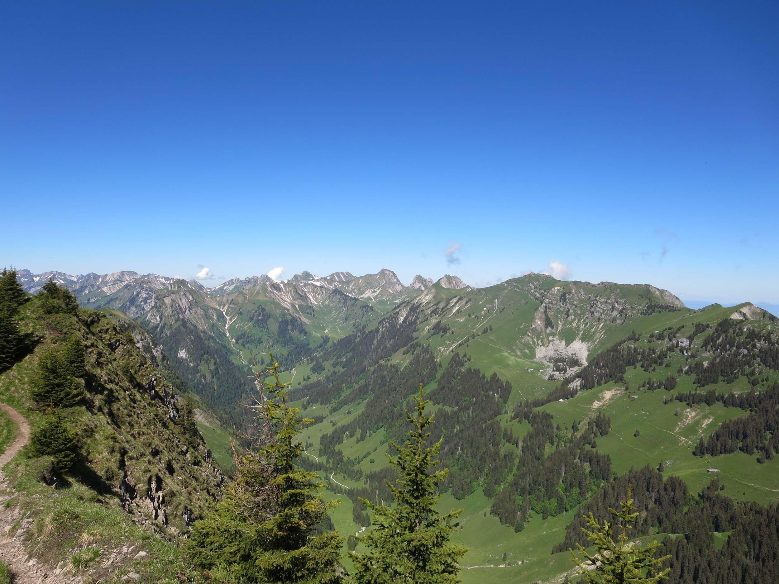 2016-06-23 10-40-52 stockhorn_038.jpg