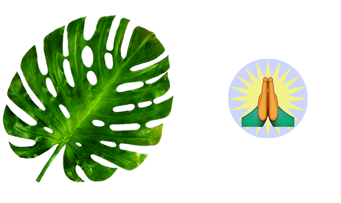 monstera_prayerhands.png