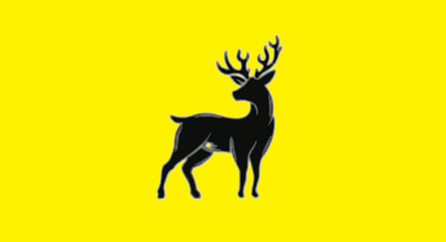arivmi - deer authority.jpg