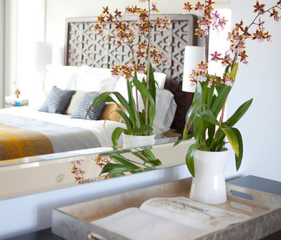 bedroom, mirror, reflection, decor, accessories, orchid