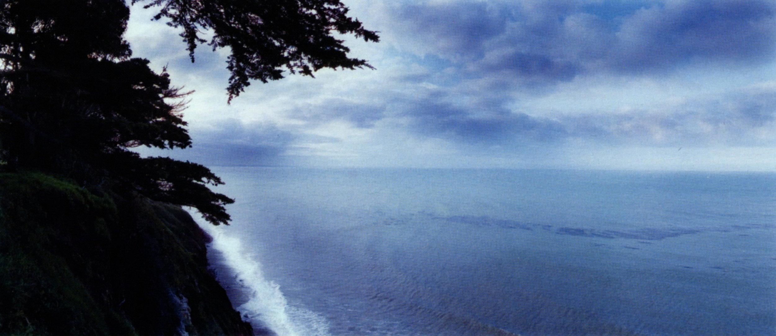 MacDuff EVERTON   View from Wilcox   2001