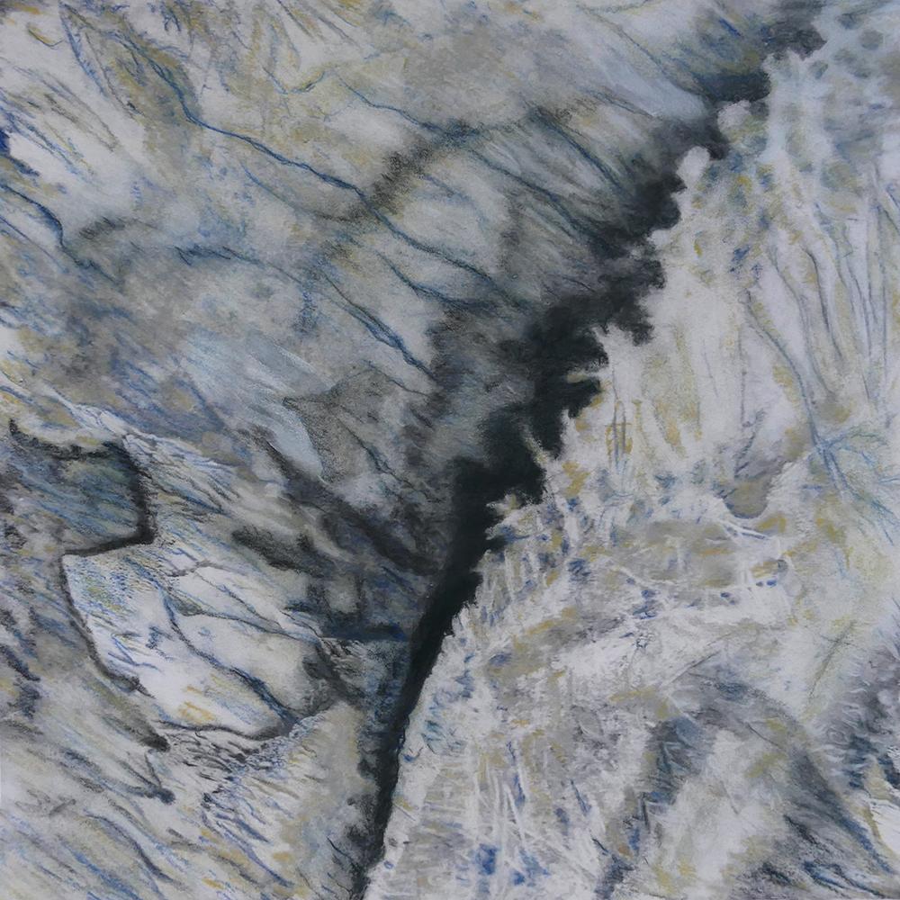 Joyce Wilson-Crevice.jpg