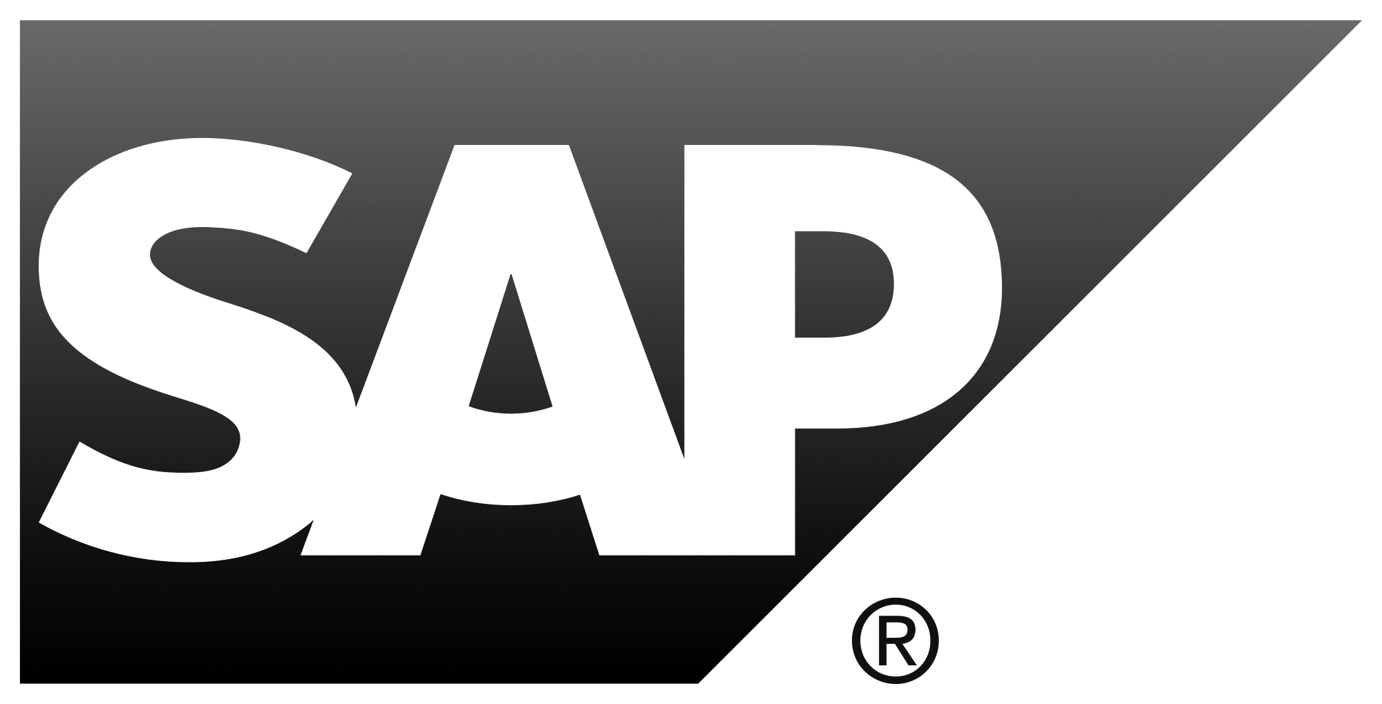 aaron_feinberg_consulting_client_SAP.png