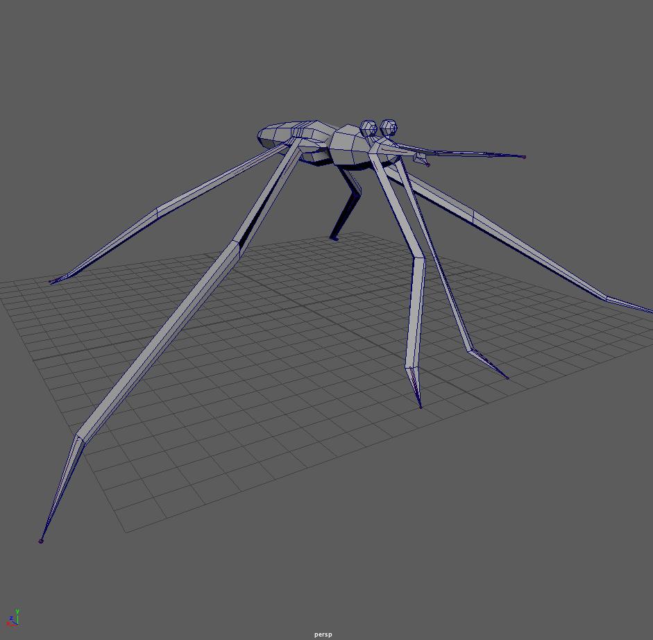 Gerridae Model