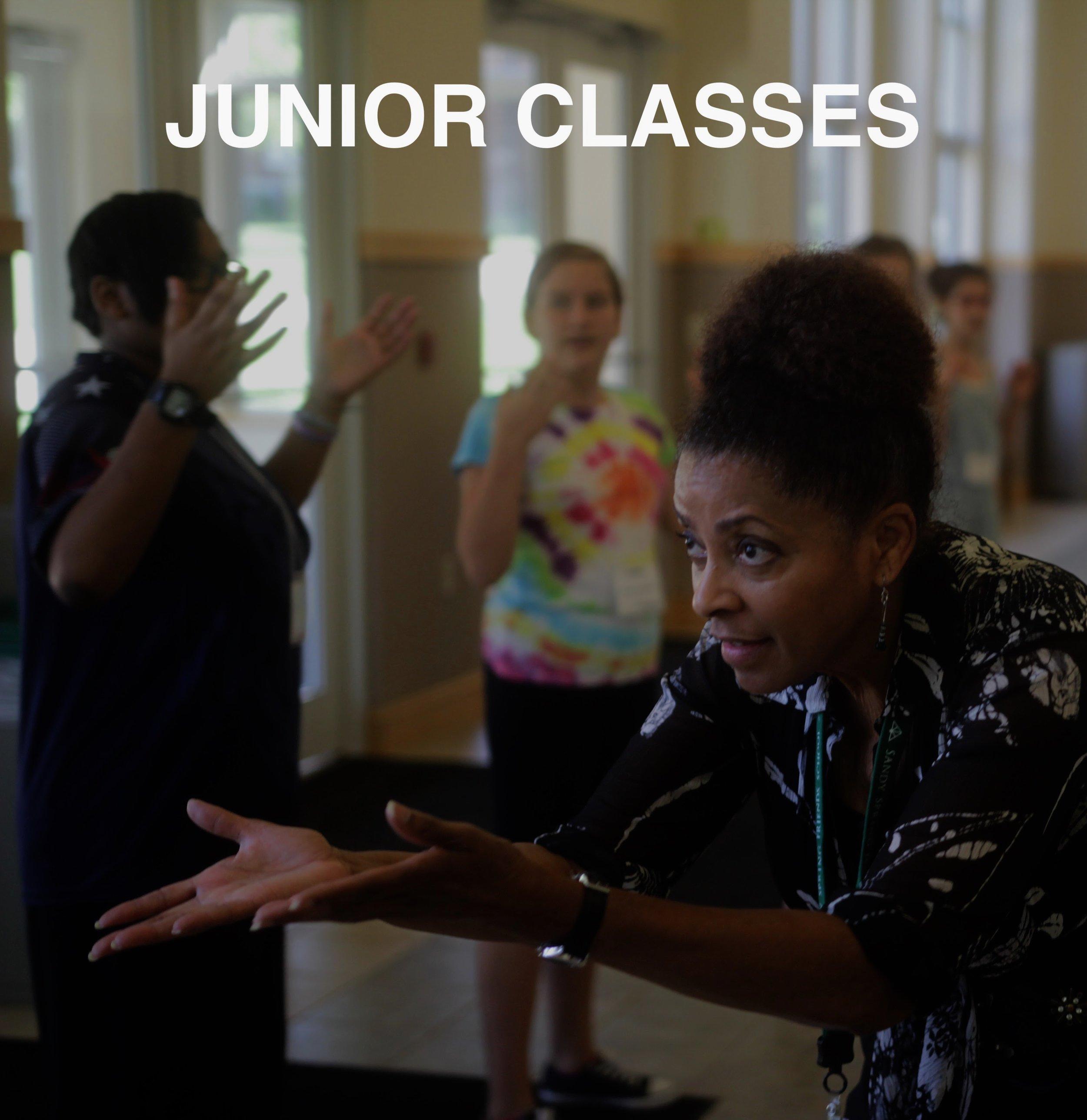 Junior Classes LOGO.jpg
