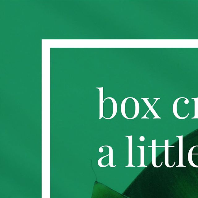 Taking a little time out to work on some exciting new things here at Box Creative! We shall return soon with a fresh look and offering - can't wait to be back and help small businesses like you build your vision and get brand confident... watch this space!⠀ ⠀ #boxcreativeuk #brandbuilder #brandconfident #businessconfidence #bebold #buildyourbrand #brandgrowth #growyourbrand #businessowner #entrepreneur #smallbusiness #microbusiness #brand #branding #investinbrand #brandidentity #visualidentity #brandingadvice #creative #design #designer #graphicdesigner #graphicdesign #investindesign #logo #logoinspiration #gooddesign #logodesign #success #entrepreneurship