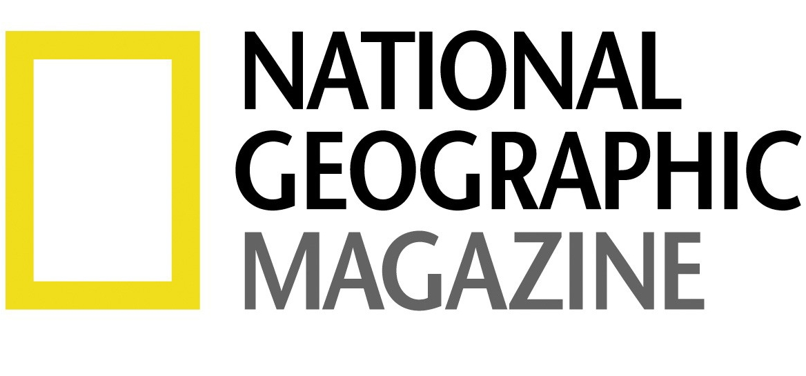 NGMbug.jpg