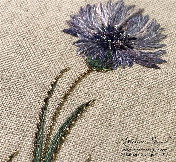 KDiuguid-cornflower3.jpg