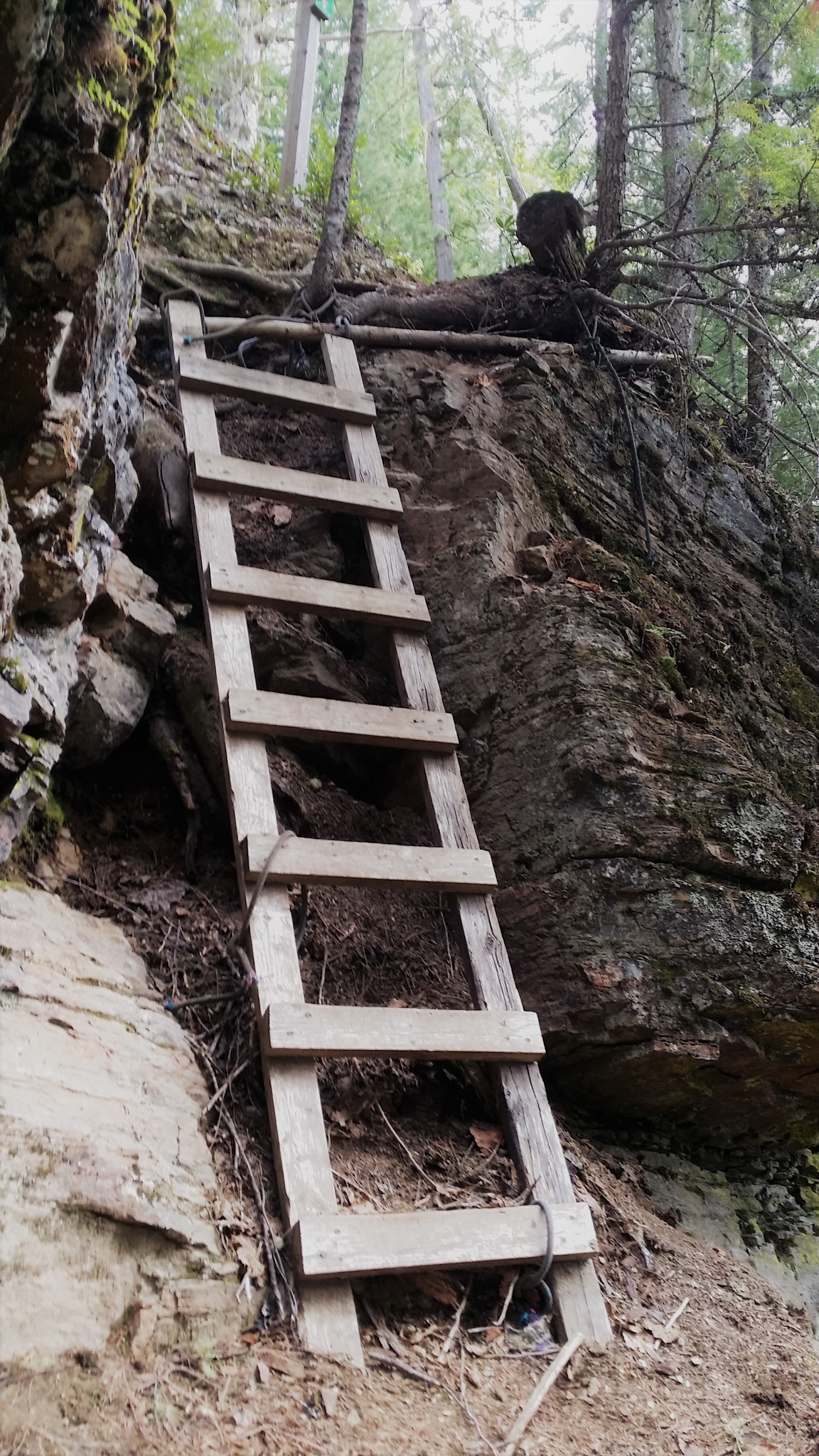 The old wood & rope ladder