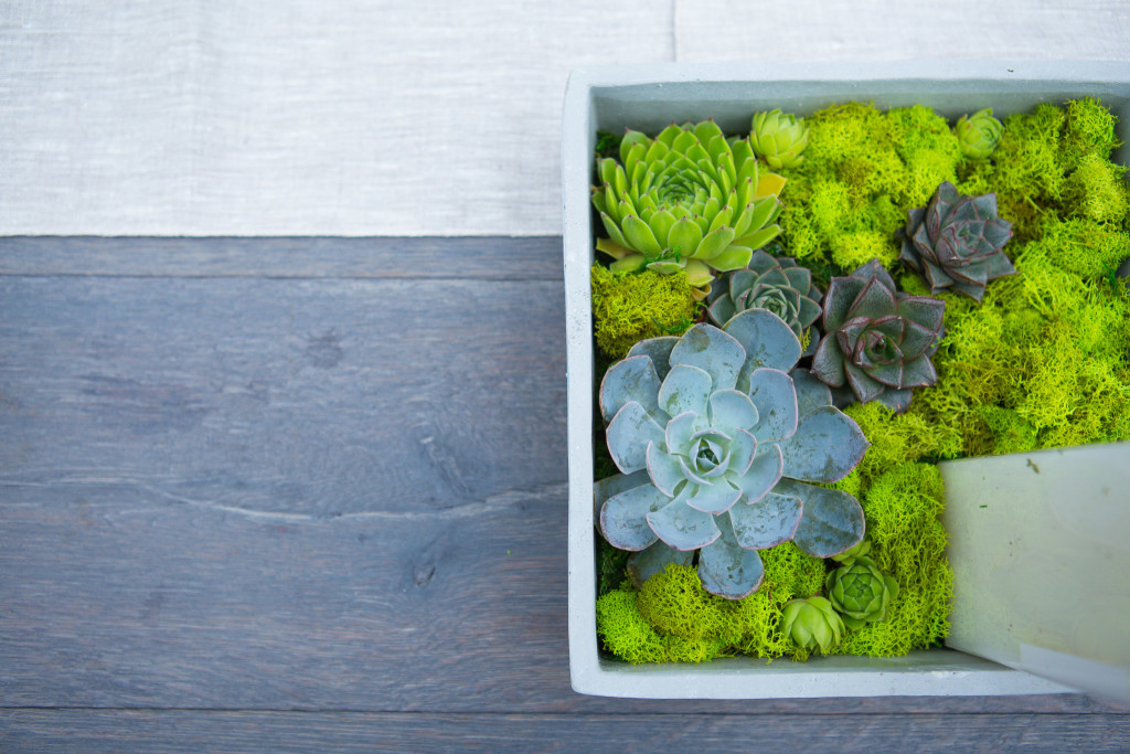 succulent-and-moss-florals-the-foundry-wedding-ny-1024x683.jpg