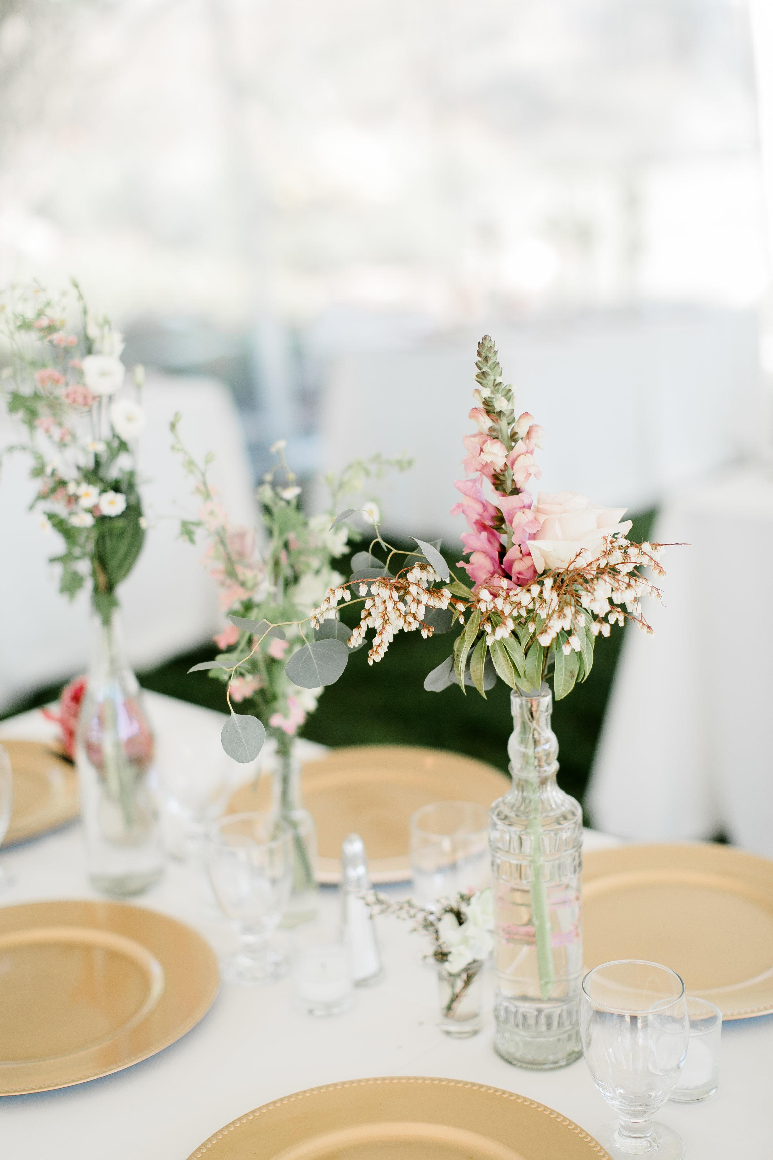 South-Coast-Botanic-Garden-Wedding-Planner7.jpg