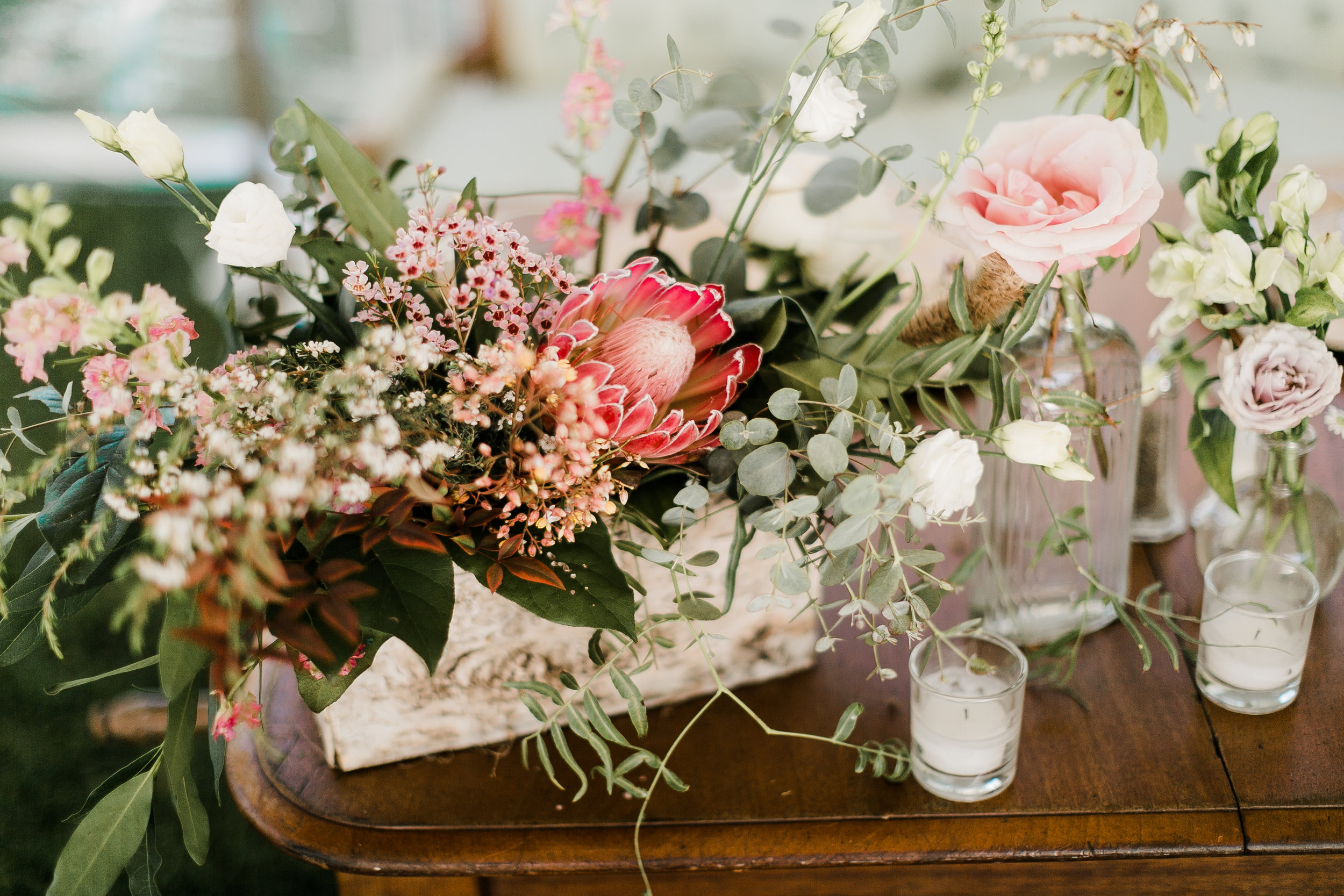 South-Coast-Botanic-Garden-Wedding-Planner22.jpg