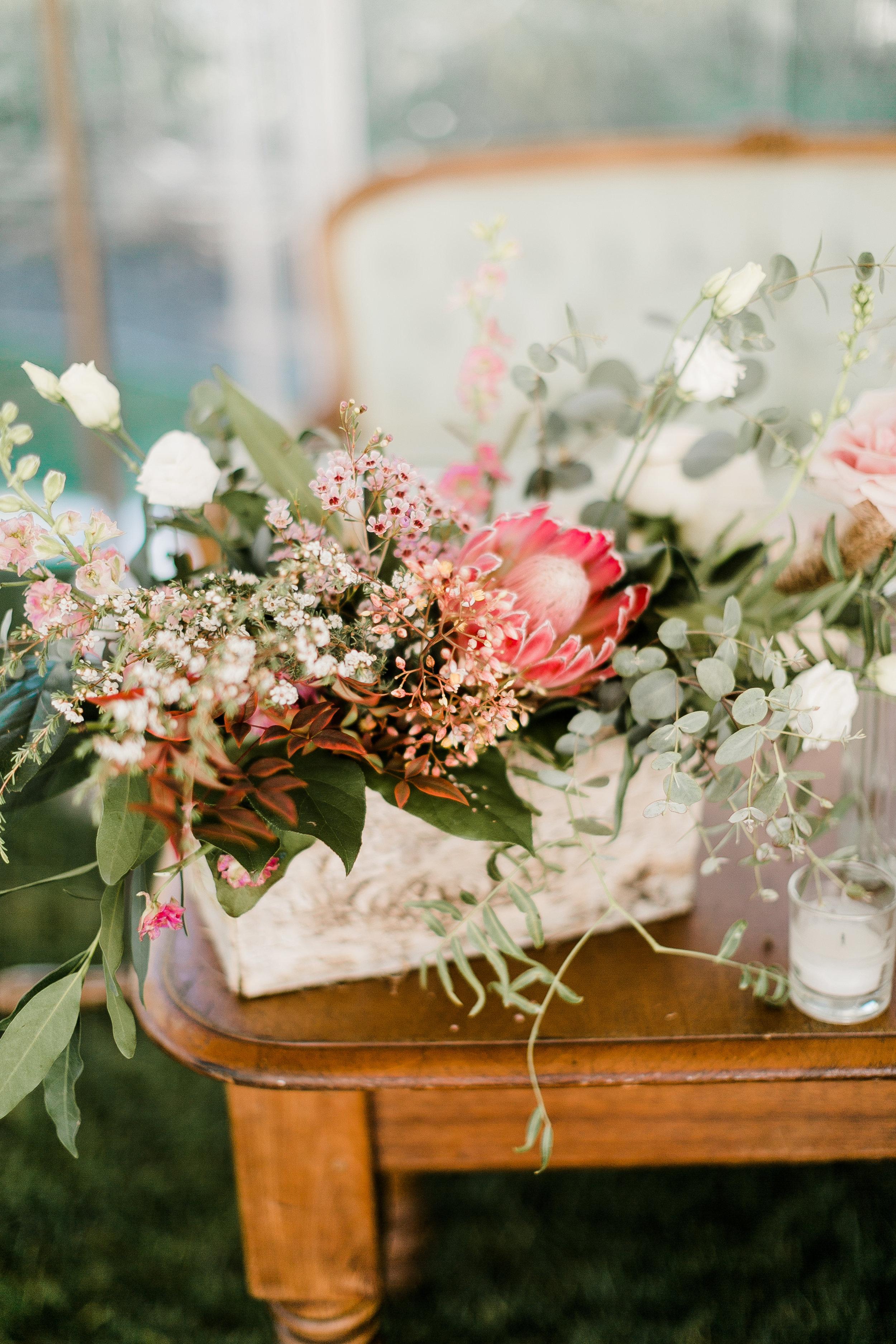 South-Coast-Botanic-Garden-Wedding-Planner23.jpg
