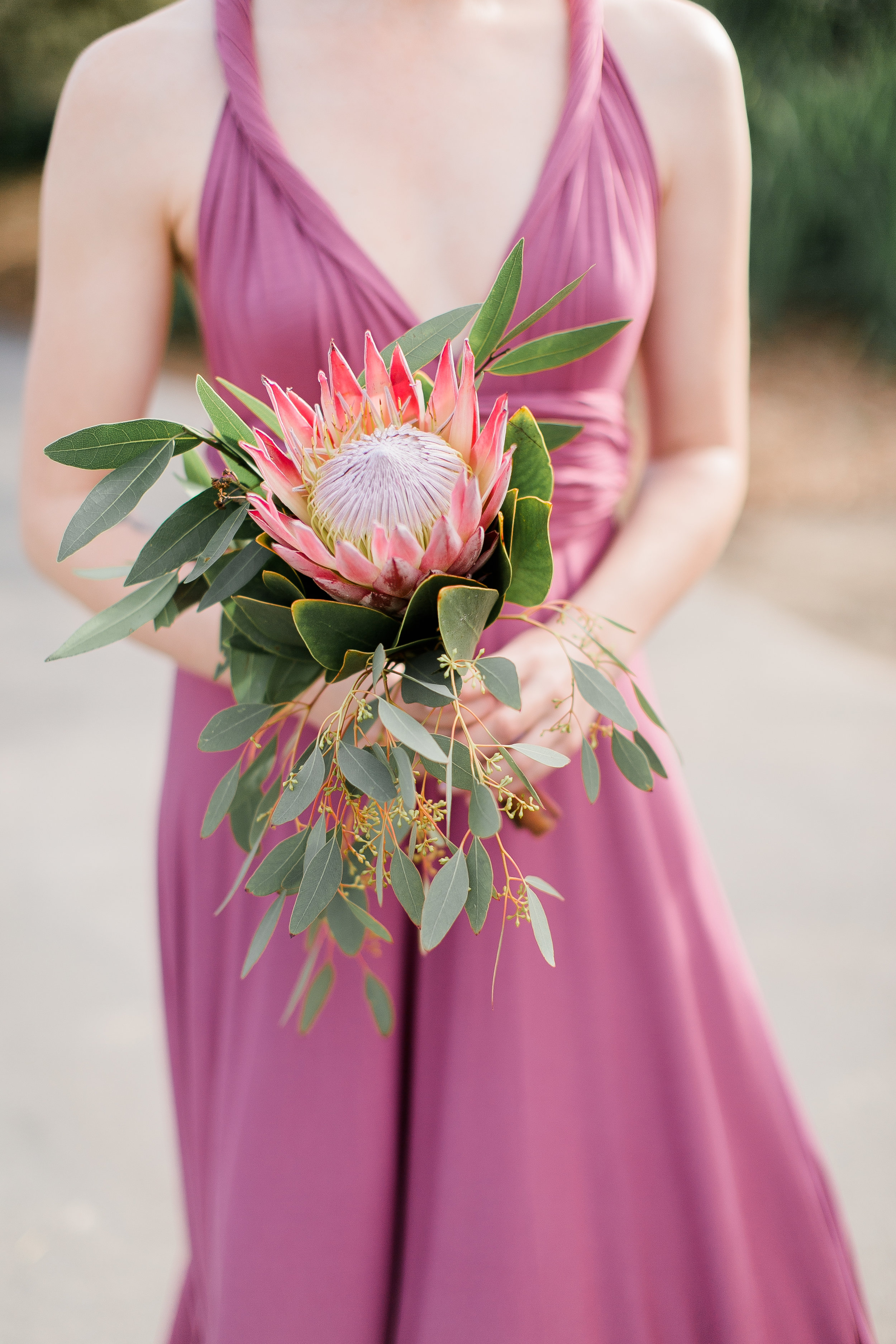 South-Coast-Botanic-Garden-Wedding-Planner37.jpg