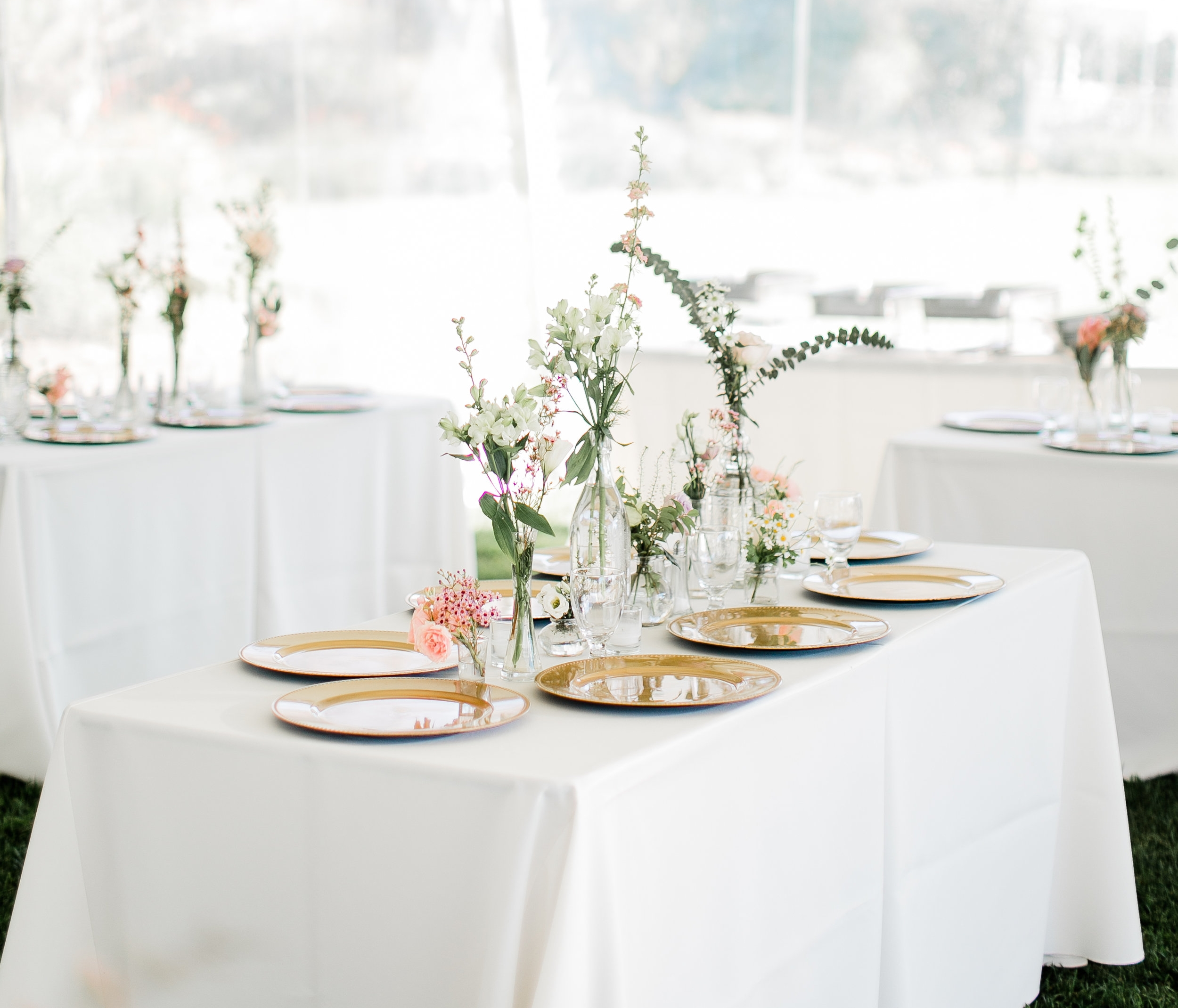 South-Coast-Botanic-Garden-Wedding-Planner8.jpg