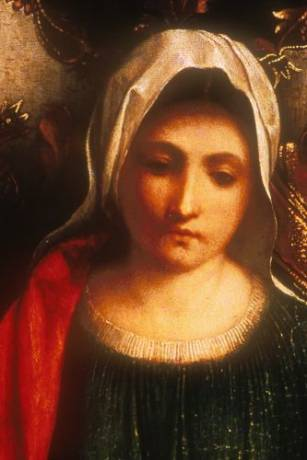 Detail of the Castelfranco Madonna, based on Cecilia
