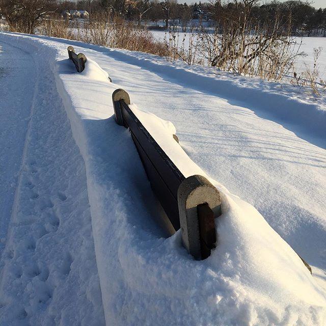 Hibernating benches.  Tão muito neve aqui!❄️☃️