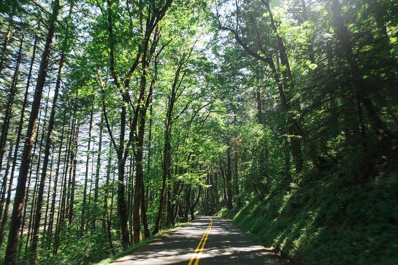 how to do a west coast road trip 123.jpg