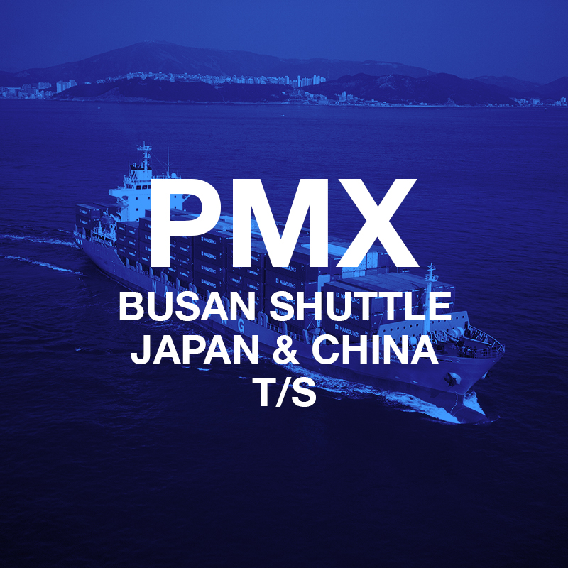 PMX Cover.jpg