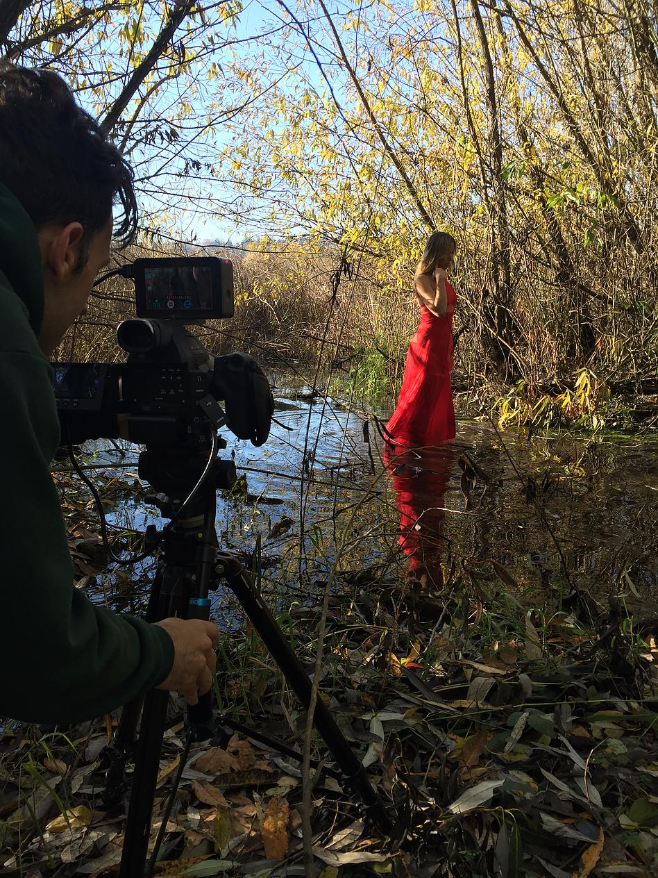 Swampy, frozen marsh shoot