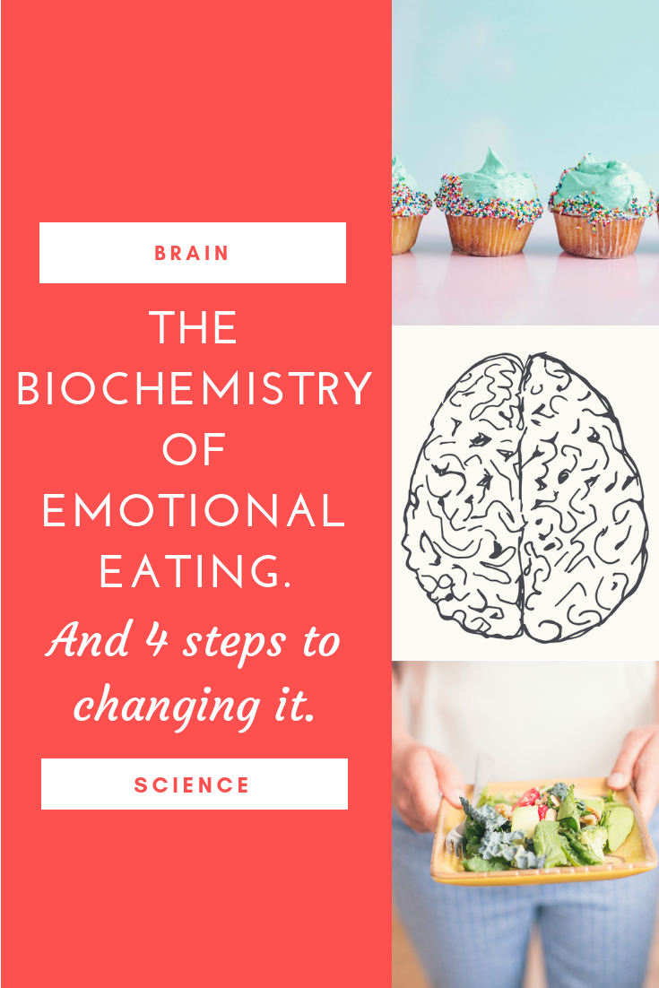 The brain science behind emotional eating.