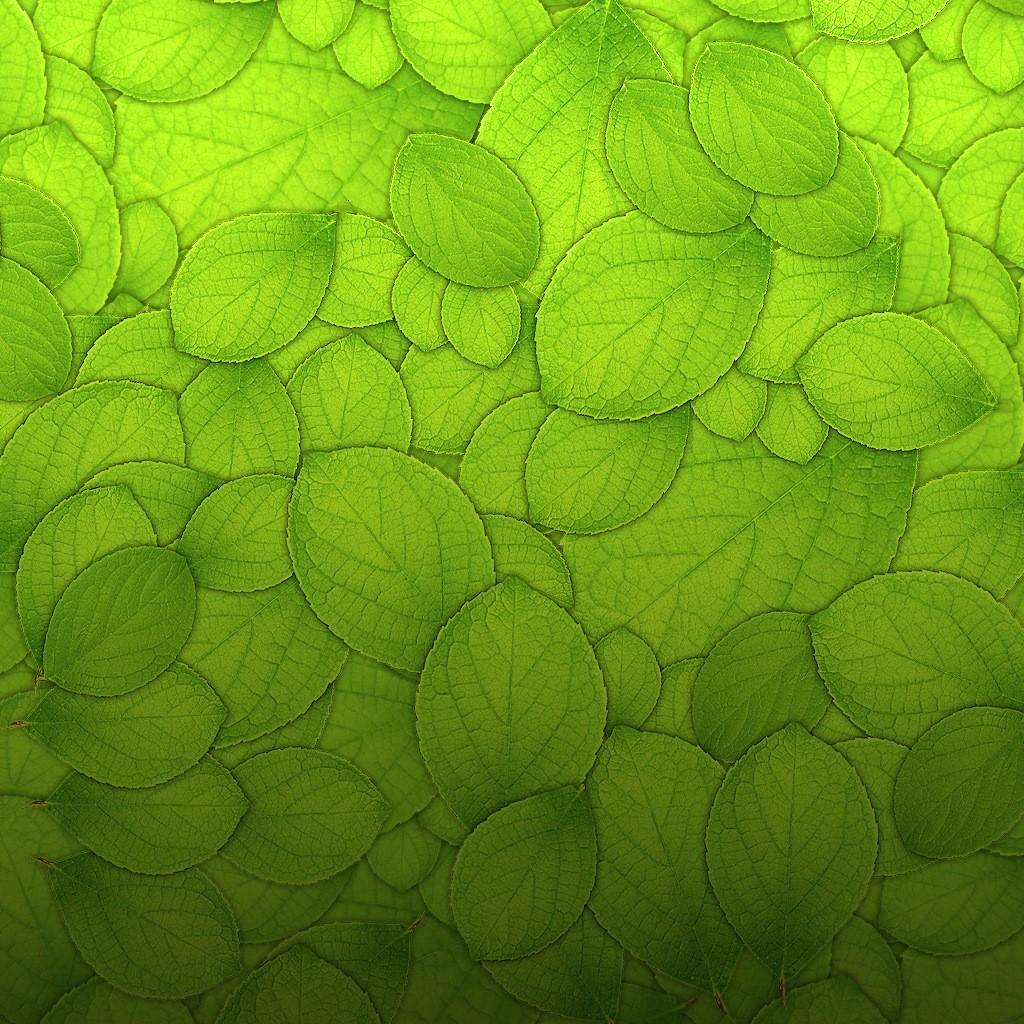 kratom-wallpaper-1024x1024.jpg
