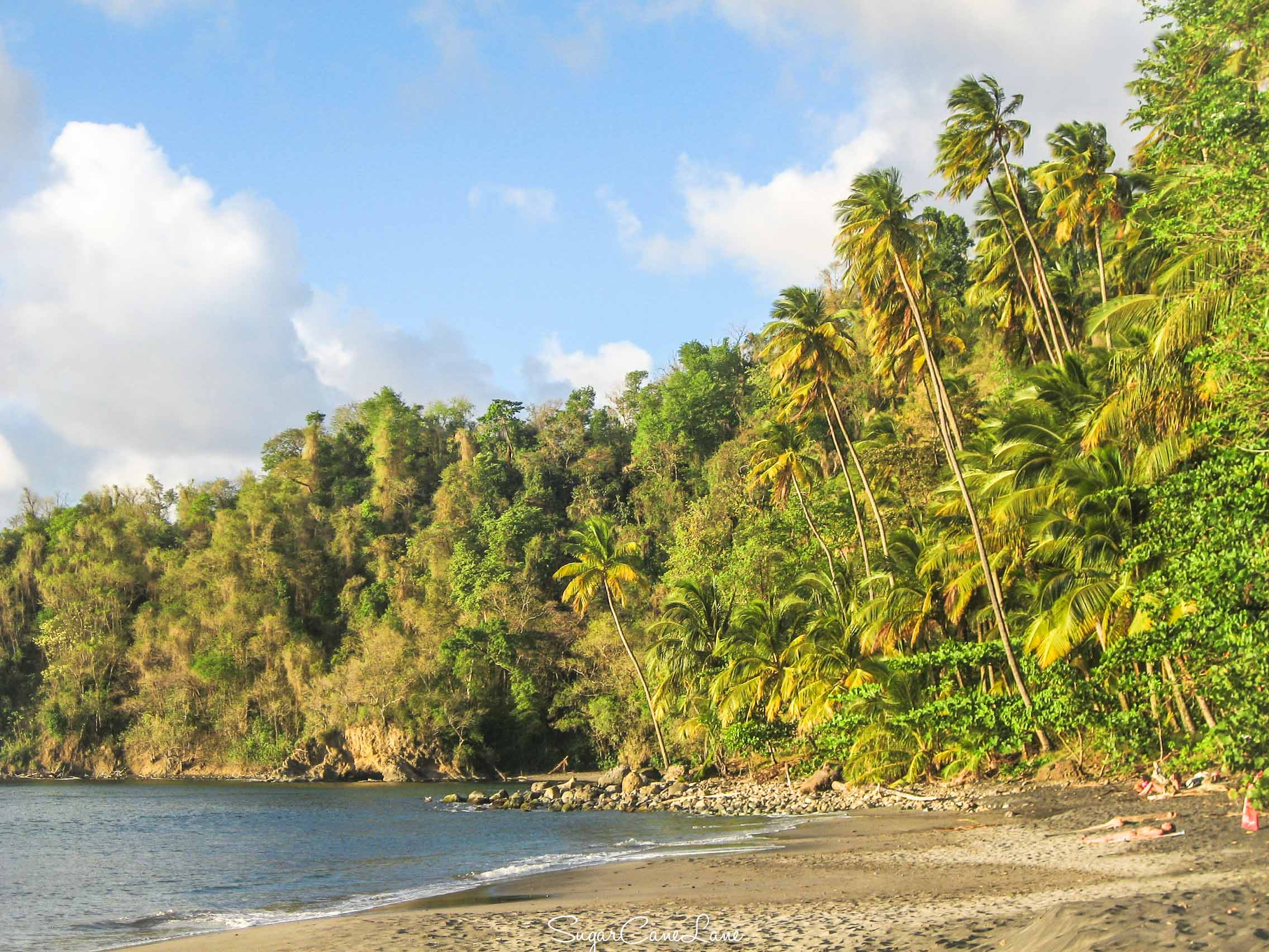 Martinique_AnseCouleuvre_431.jpg