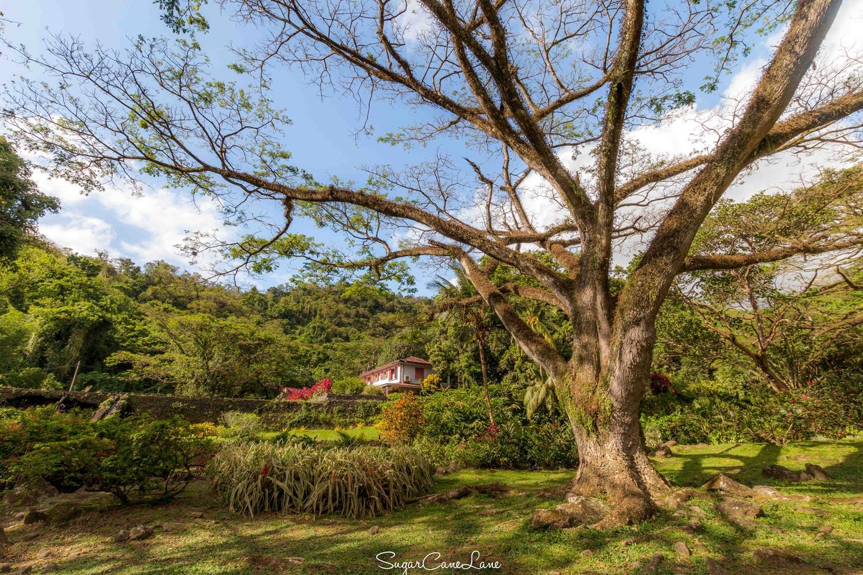 Martinique, Habitation Ceron, zamana
