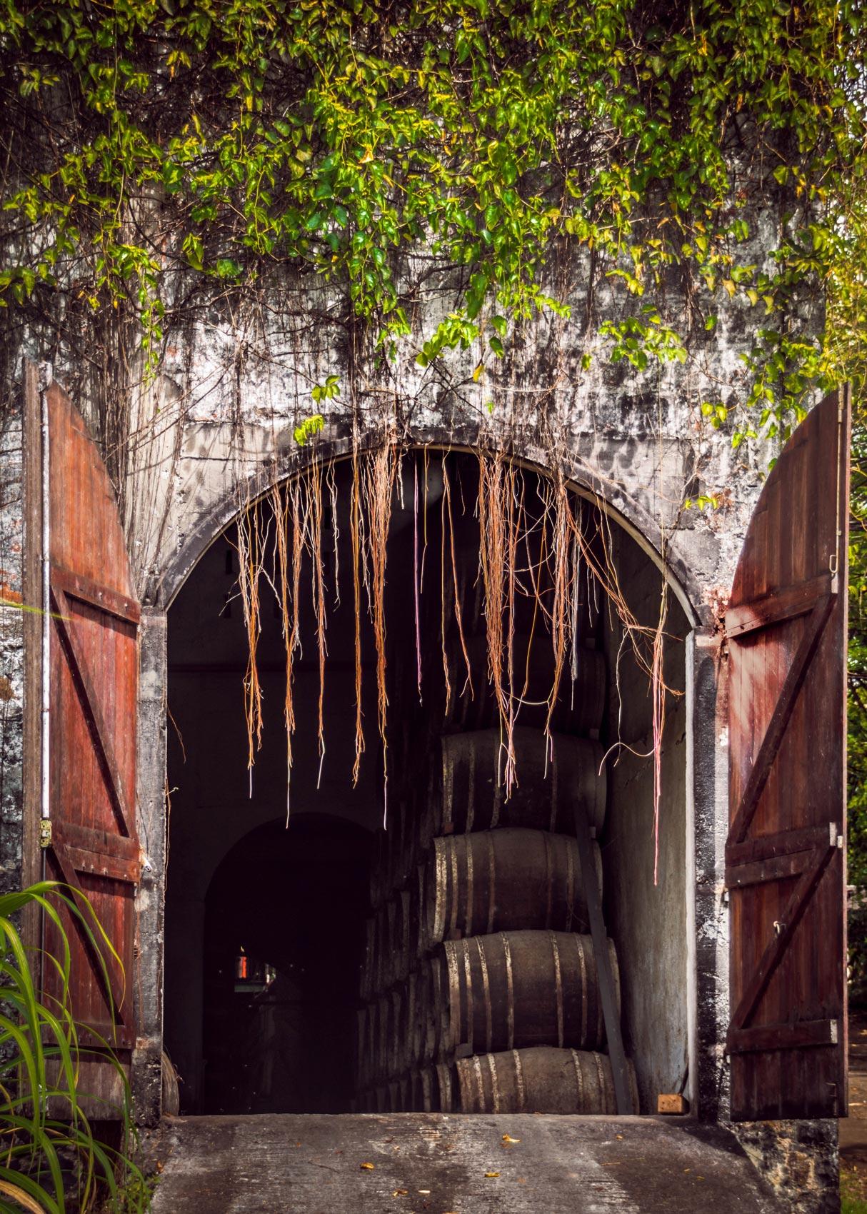 Martinique, distillerie la favorite, le chai