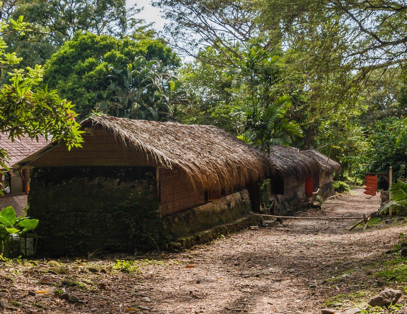 Martinique, cases negres habitation Ceron
