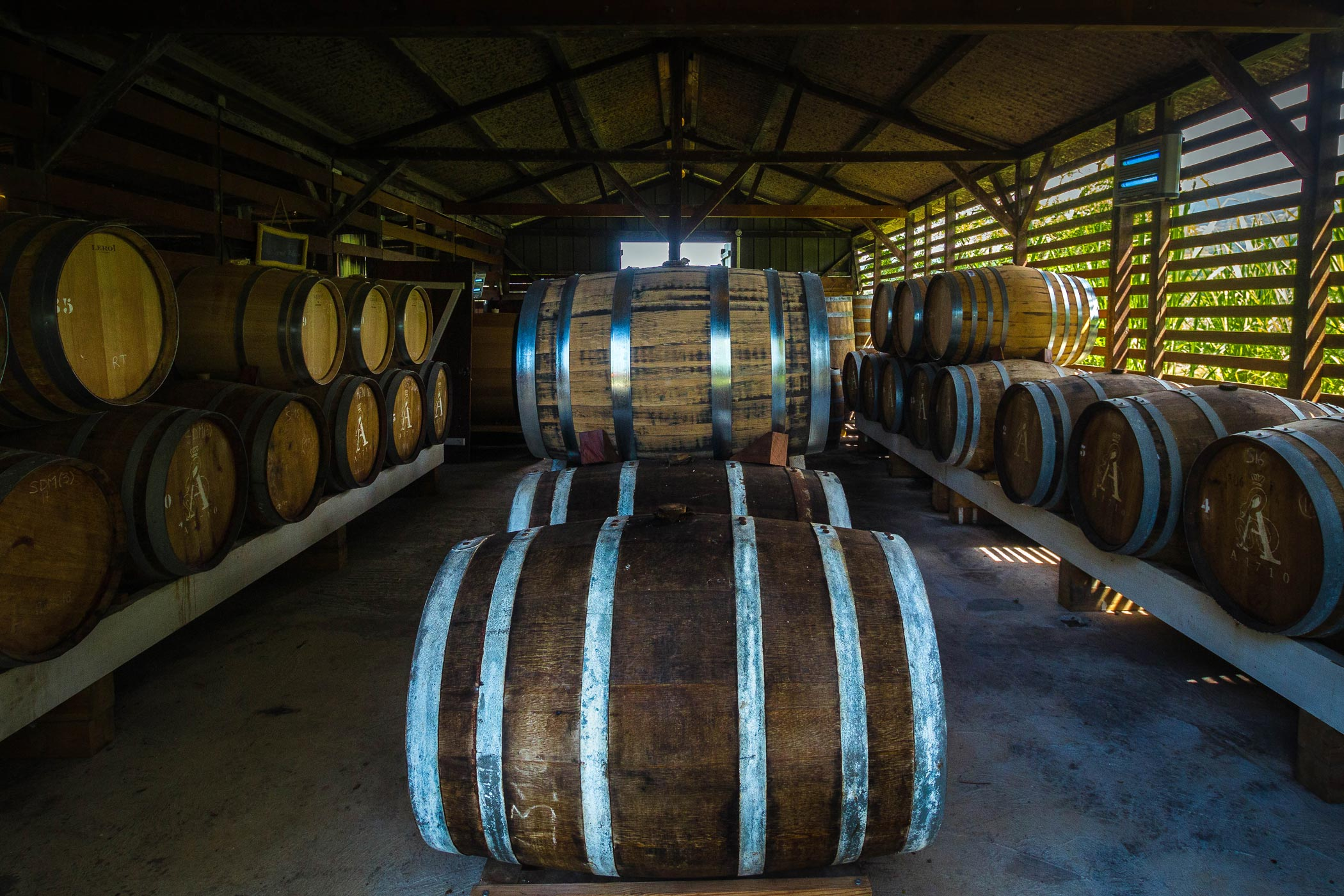 martinique, habitation du simon : chai de futs de rhum