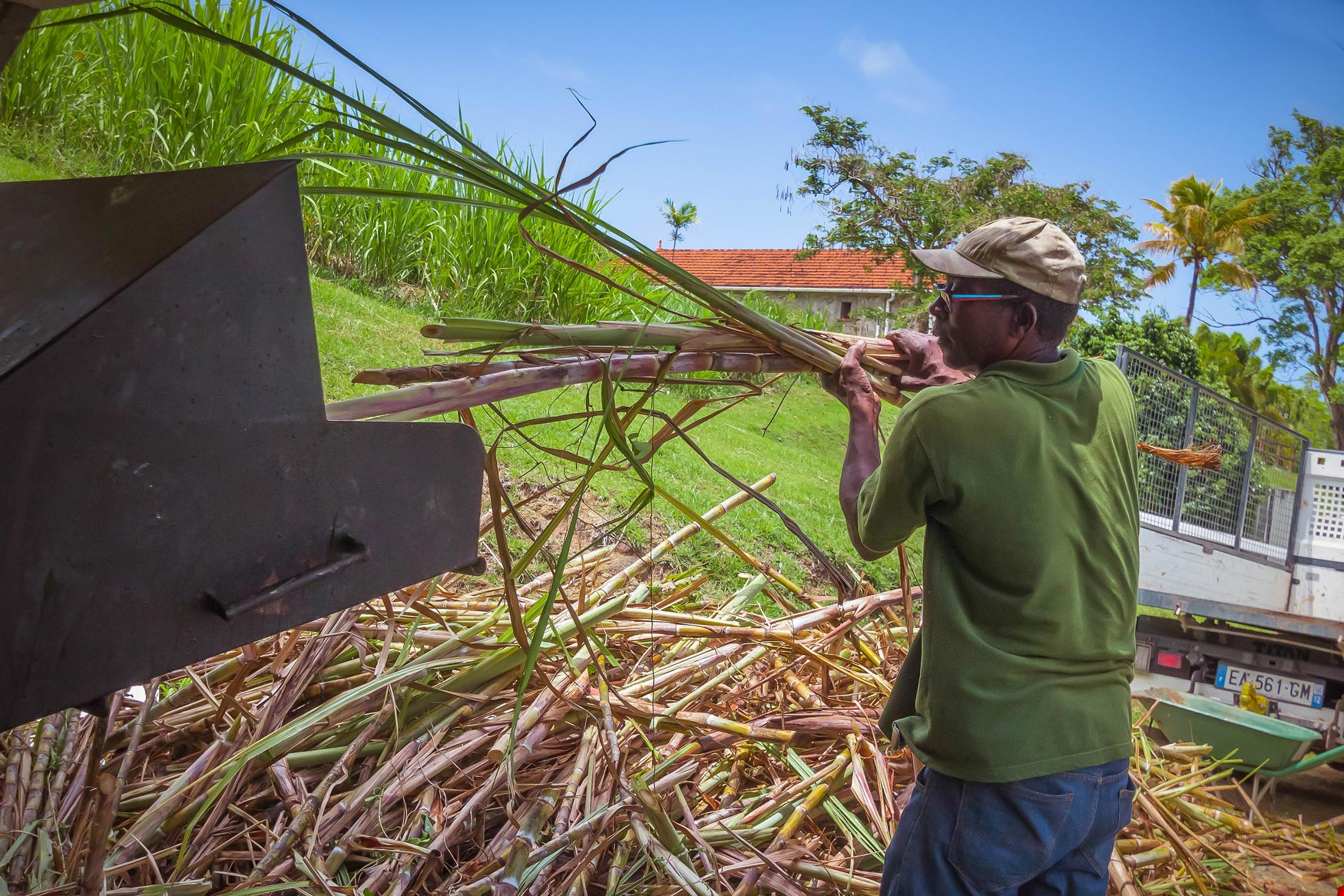 martinique, habitation du simon : broyage de la canne à sucre