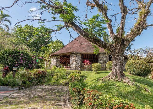 Sur la carte de la Martinique, la commune des Trois-Îlets est une étape incontournable sur un itinéraire de découverte de l'île. Cette petite commune du sud est un véritable concentré de sites d'intérêt. Il y a les plages bien sûr, mais aussi le golf, la Maison de la Canne, La Poterie, la Savane des Esclaves, la mangrove, la forêt domaniale, la petite église et ... le Domaine de la Pagerie. -------------------------- #sugarcane_lane#fwi#Antilles#caribbeandreams#lapagerie #trois-ilets #heritage#history#discovermartinique#france4dreams#iamfrommartinique#ig_caribbean #ig_caribbeansea#ig_martinique #martiniquemagnifique #visitmartinique #westindies #martiniquetourisme#matnik #tree #napoleon #bonaparte
