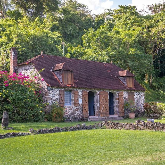 Martinique, Domaine de la Pagerie  On aurait pu rebaptiser l'endroit le Domaine de l'Impératrice. C'est sur cette ancienne habitation sucrière que naît en 1763 la petite Marie-Josèphe-Rose Tascher de la Pagerie, surnommée Yéyette,  enfant promise à un destin hors du commun. ------------------------ #sugarcane_lane #fwi #Antilles #caribbeandreams #lapagerie #imperial #heritage #history #discovermartinique #france4dreams #iamfrommartinique #ig_caribbean #ig_caribbeansea #ig_martinique #martiniquemagnifique #visitmartinique #westindies #martiniquetourisme #matnik #tree #napoleon #bonaparte