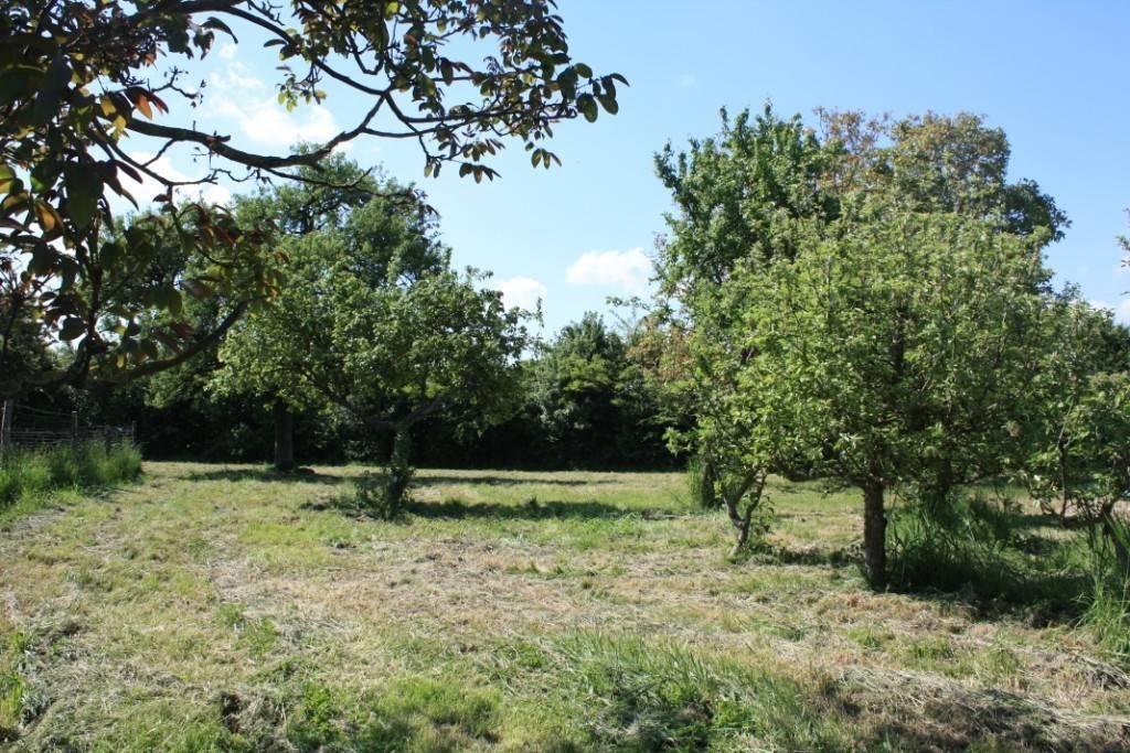 Baudron - jardin