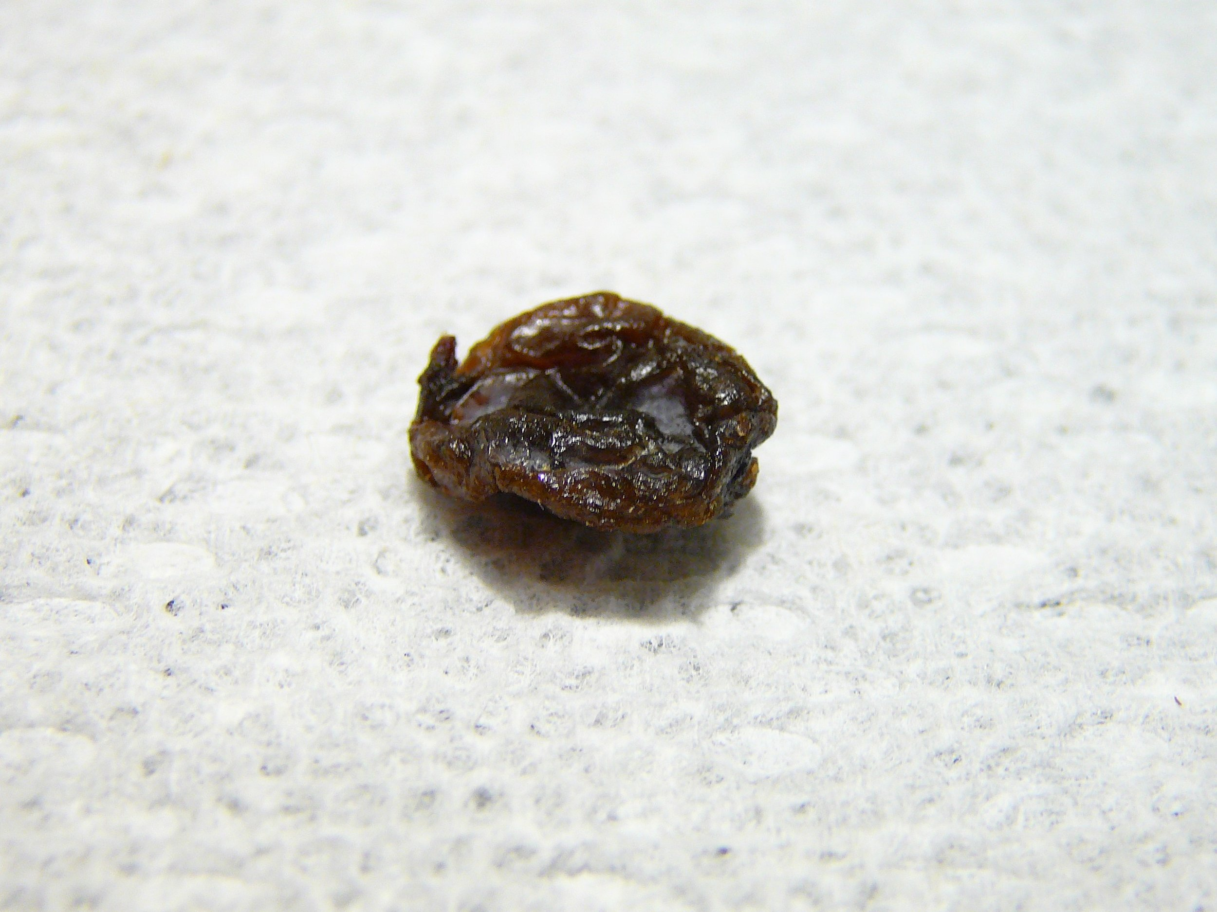 Mindful eating exercise: contemplate the raisin.